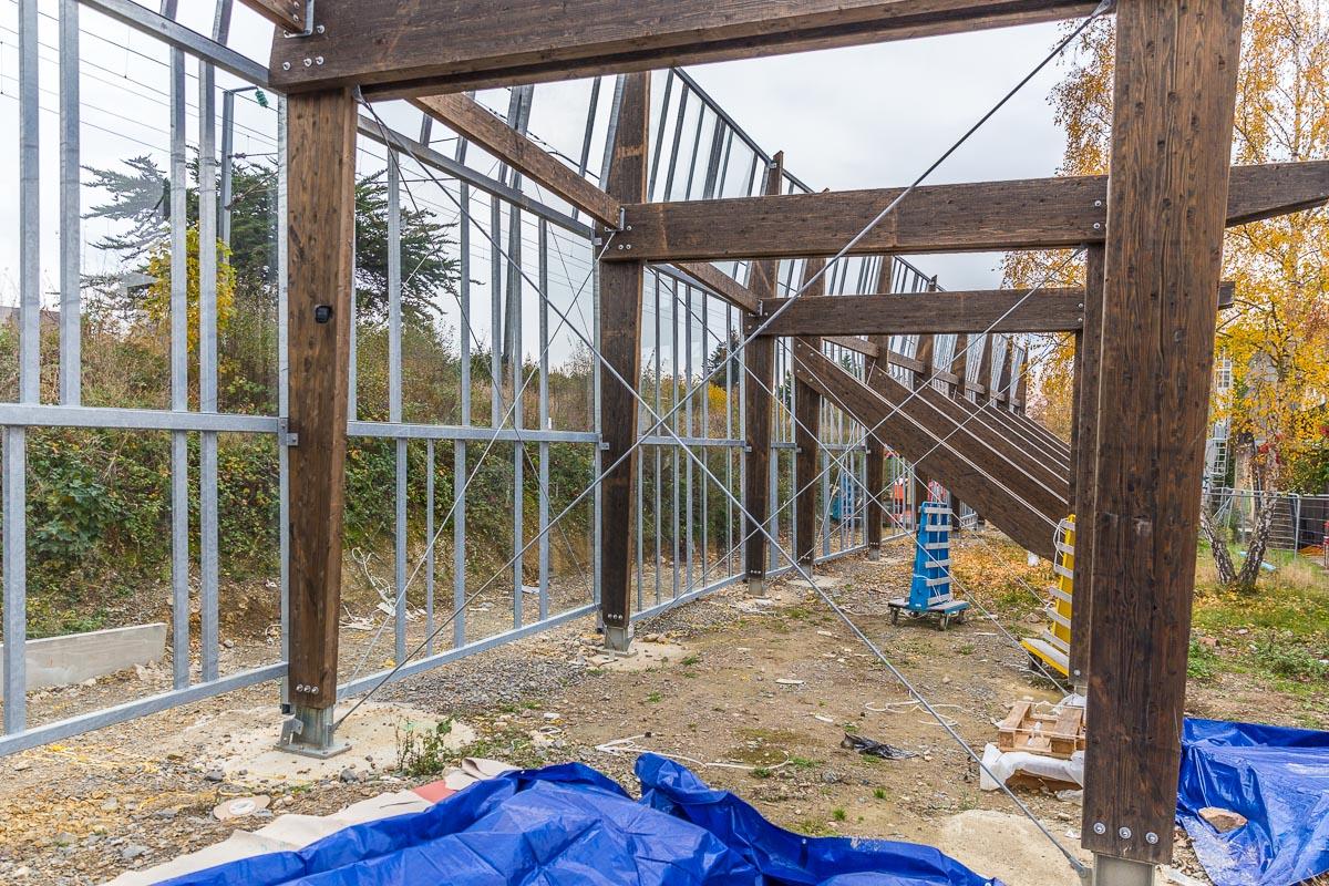 web 800p le mur habité rennes-9952