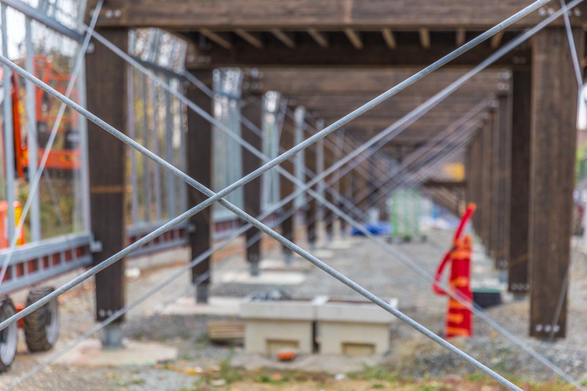 web 800p le mur habité rennes-9960
