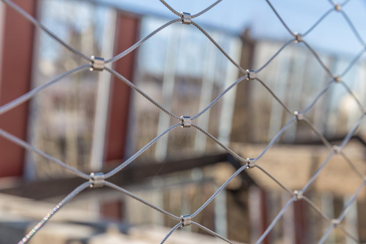 web 800p le mur habité rennes-3968