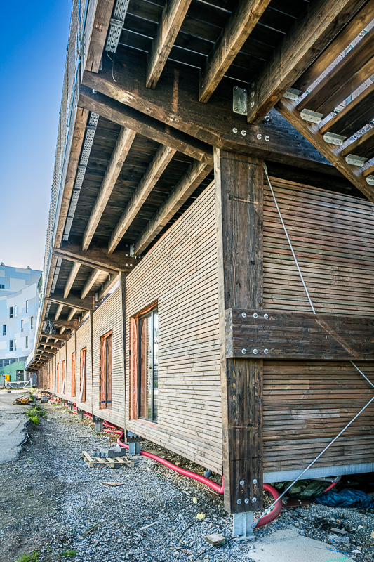 web 800p le mur habité rennes--5